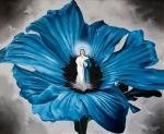 Blumenwunder 2006
